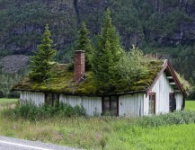 Трава на крыше - хорошая маскировка!