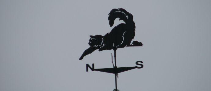 Кот флюгер