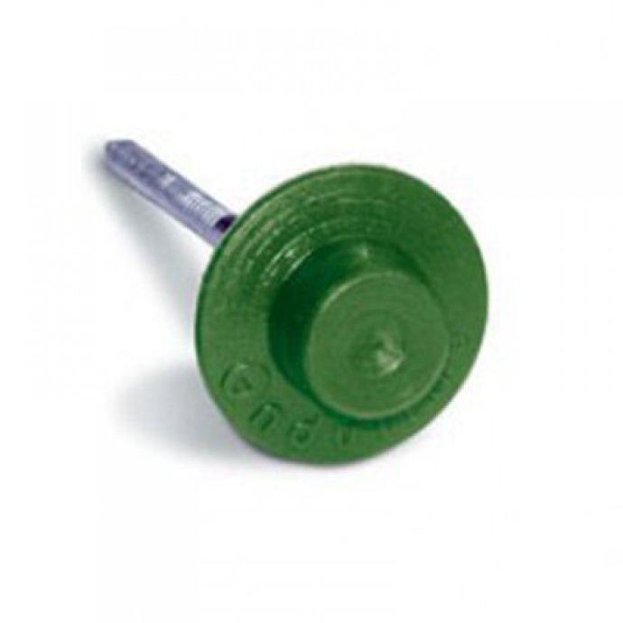 Зеленый гвоздь