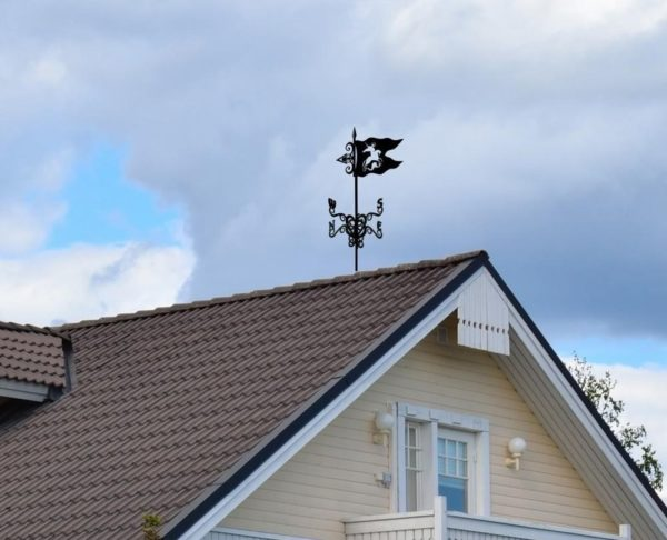флюгер фото на крыше